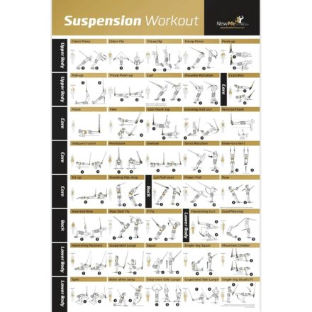 Suspension Training Archives  Gym Ready Equipment